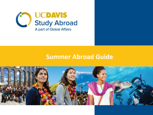 Summer Abroad Guide