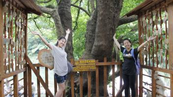 UC Davis Study Abroad, Summer Abroad Taiwan Program, Photo Album, Image 2