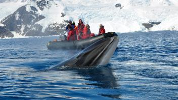 UC Davis Study Abroad, Seminars Abroad Antarctica Program, Photo Album, Image 7