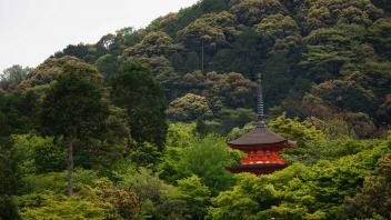 UC Davis Study Abroad, Summer Abroad Japan Program, Photo Album, Image 14