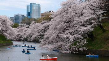 UC Davis Study Abroad, Summer Abroad Japan Program, Photo Album, Image 6