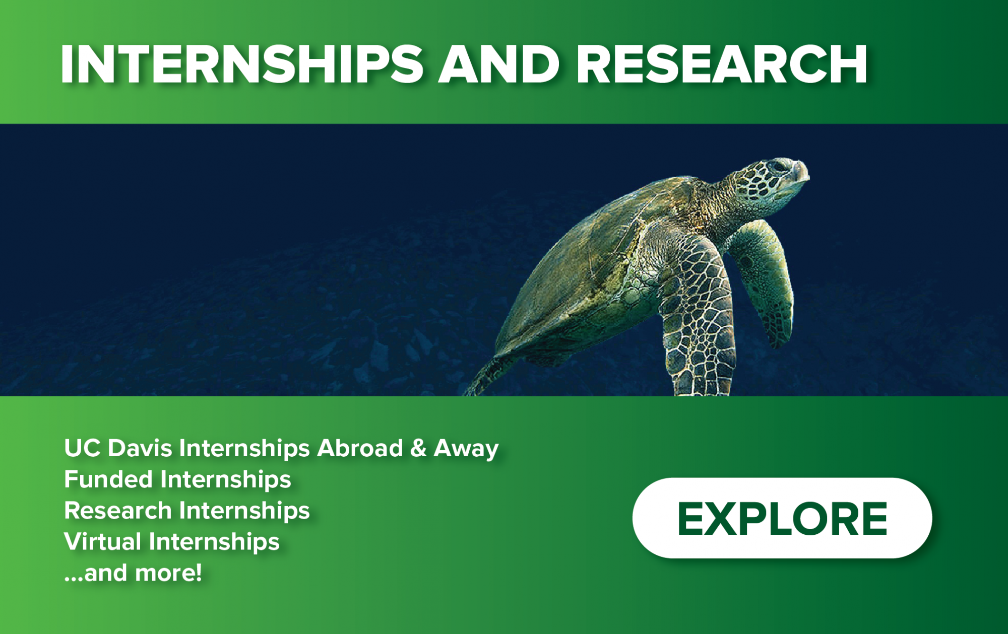 Homepage Teaser Image - Internships and Research Portal - UC Davis Internships Abroad and Away; Funded Internships; Research Internships; Virtual Internships; and more